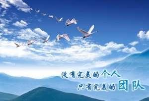 陆台公司2019年新春团拜会